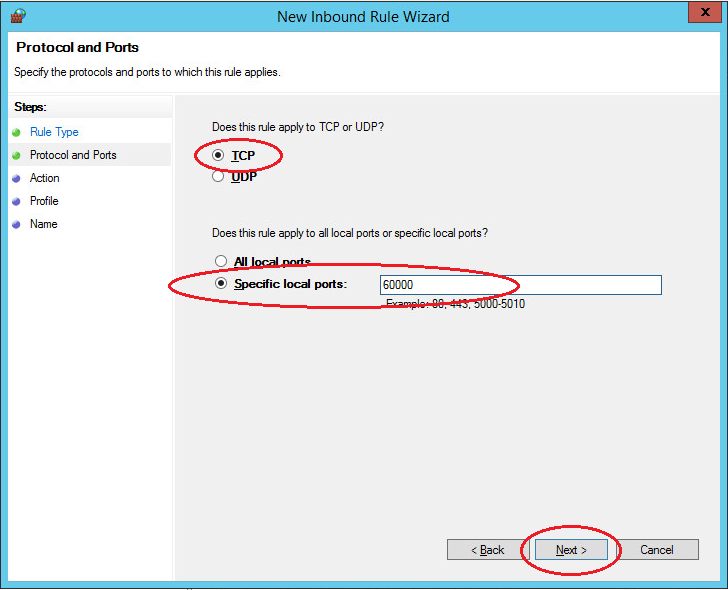 windows server new port input