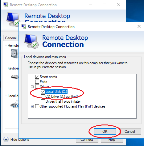 RDP local discs connection