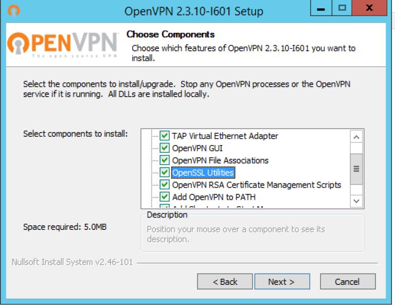 Setting up an Open VPN server on Windows Server 2008/2012
